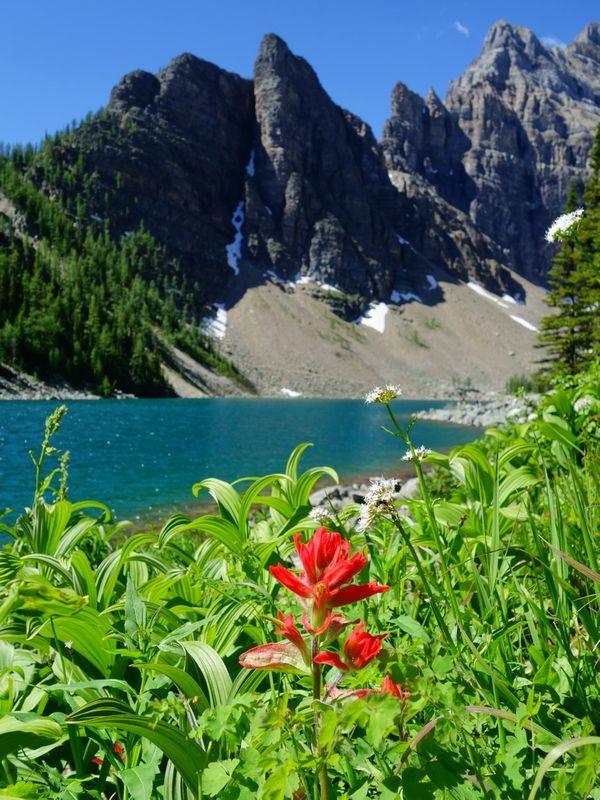 Banff Lake Louise Lake Agnes