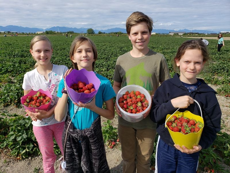 Emma Lea Strawberry Picking Children