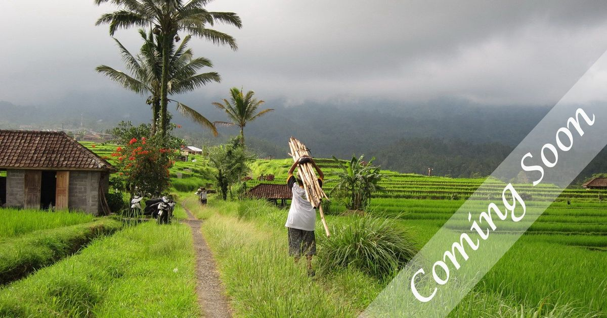 What to do in Bali – A Three Week Plan