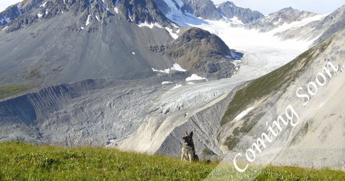 A Yukon Hiking Guide by a Yukoner